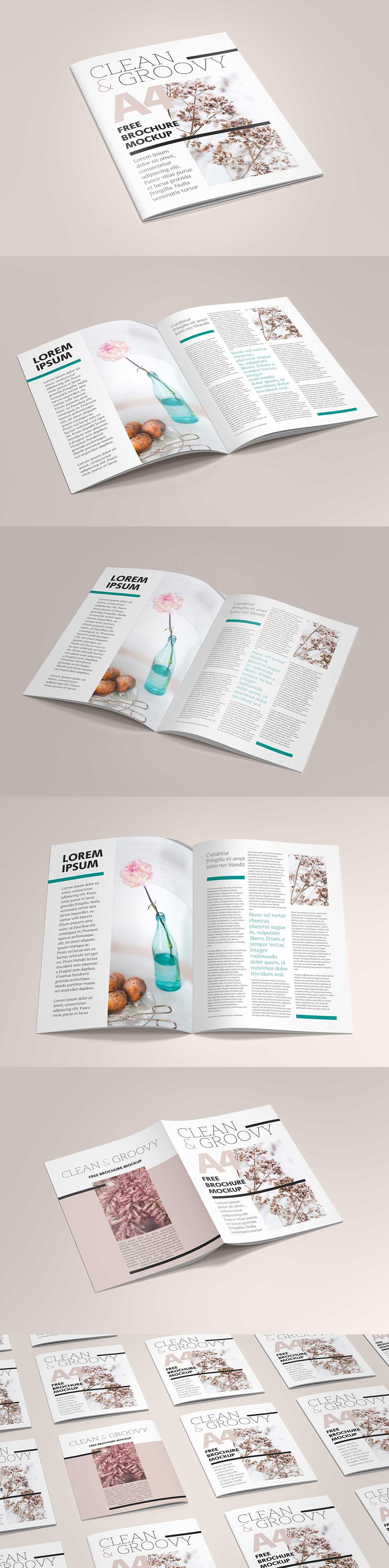 Free-A4-brochure-Catalog-mockup