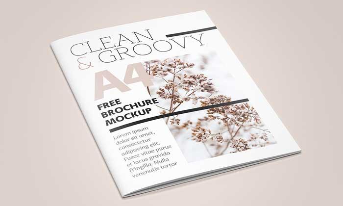 Free-A4-brochure-Catalog-mockup1