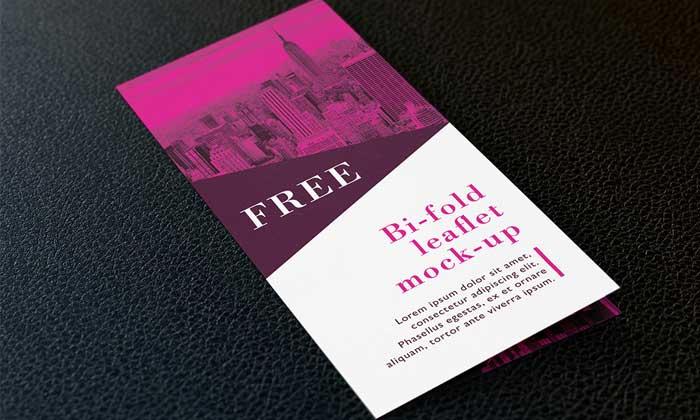 Free-bi-fold-DL-leaflet-mockup-PSD.jpg0
