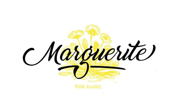 Free-Marguerite-Script.jpg10