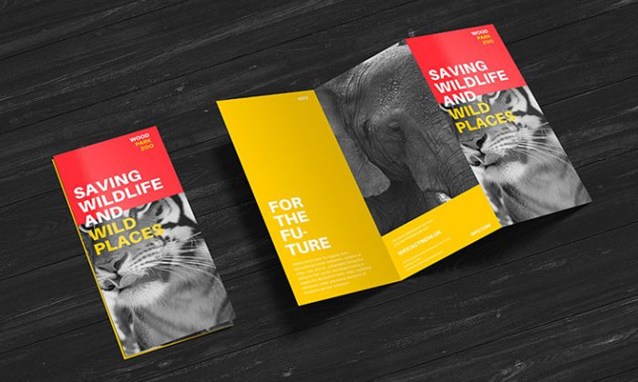 Free-Premium-Z-Fold-Brochure-Mockup-PSD-File.jpg10